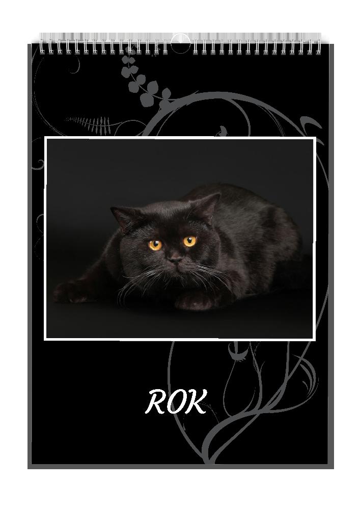Černý ornament