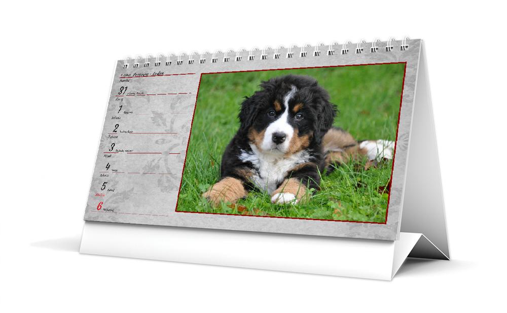 Stolní kalendář - DL - Historický motiv